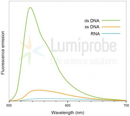 Pico488 dsDNA quantification reagent, 200x solution in DMSO