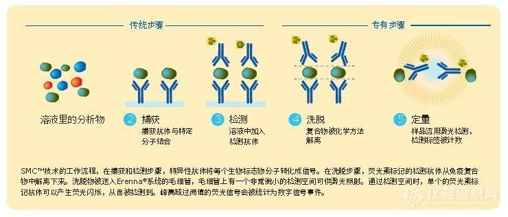 Erenna单分子免疫检测平台-其他生物/生化分析仪
