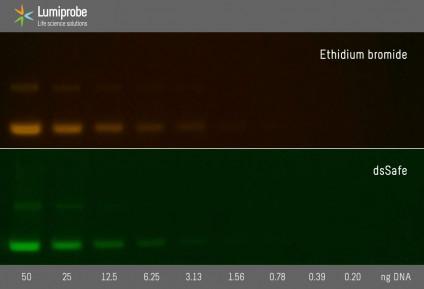 dsSafe раствор для окрашивания нуклеиновых кислот в геле, 10000x